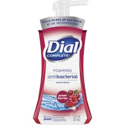 Dial Complete Foaming Antibacterial Hand Wash (03016)