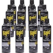 Raid Wasp/Hornet Killer Spray (668006)