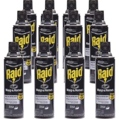 S. C. Johnson & Son Raid Wasp/Hornet Killer Spray (668006CT)