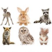Carson-Dellosa Publishing Carson-Dellosa Woodland Whimsy Animals Cut-Outs Set (120564)