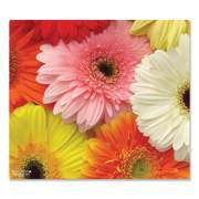 WOW!Pad Mouse Pad, Floral Gerberas Design, 7.5 x 8.5, Multicolor (940489)