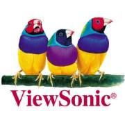 Viewsonic Corporation Display Port To Dvi Adapter (LCD-CABLE-001)