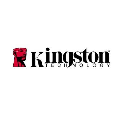 Kingston 16gb Dtvp W/256bit Encryption 100% (DTVPA/16GB)