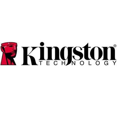 Kingston 256mb For Gsa,federal Govt Only (KTC-PR266/256-G)