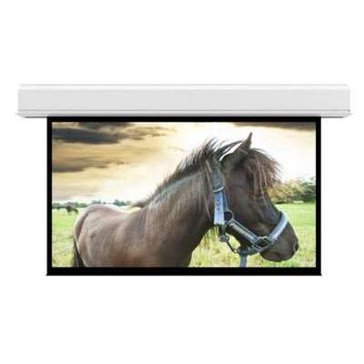 DA-Lite Screen Company Advantage 18x24 Mw (36993L)