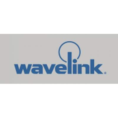 Wavelink 310-MA-AVAVR3