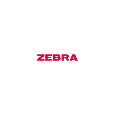 Zebra Conversion Kit (203 or 600 dpi to 300 dpi) (ZBRP1058930-022)